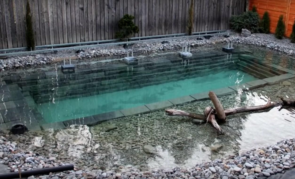 Հարևանները կարծում էին, որ նրանք կառուցում են հասարակ լողավազան, բայց երբ ջուր լցրեցին նրա մեջ, շատ անսովոր դարձավ