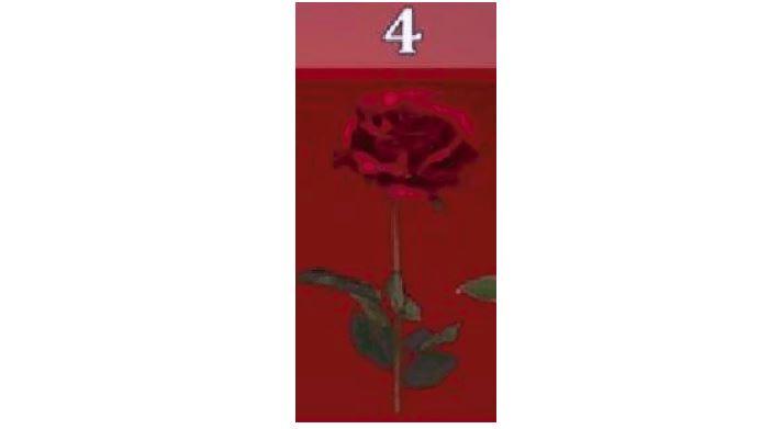Ընտրեք վարդը և պարզեք, թե երբ կկատարվի ձեր ցանկությունը