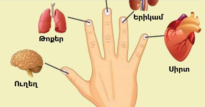 Յուրաքանչյուր մատը կապված է ներքին օրգանների հետ. Բուժման մեթոդներ Ճապոնիայից, որոնք բուժում են 5 րոպեի ընթացքում